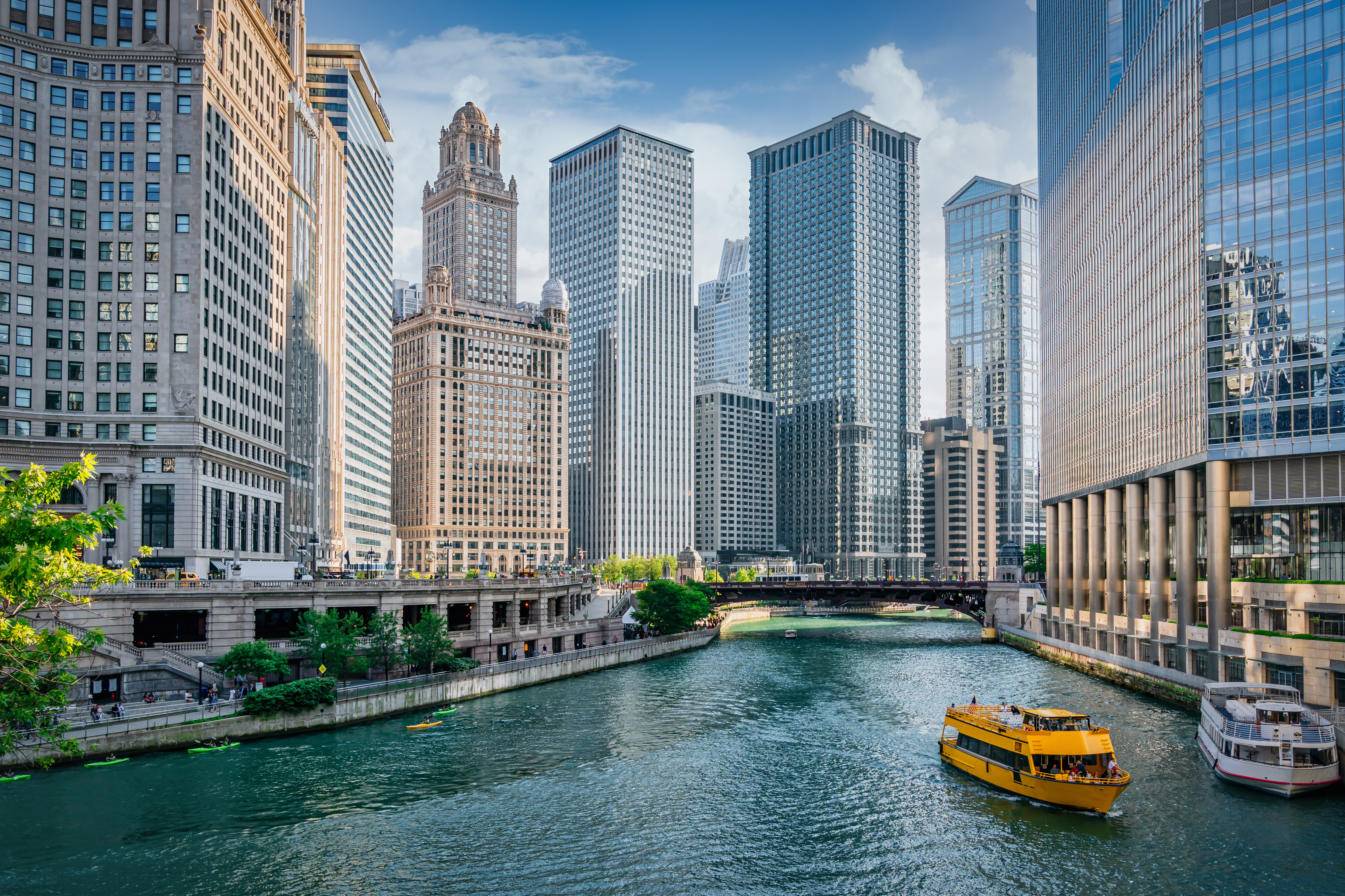 Chicago River Cityscape Water Taxi Tourboat Cruising in Summer