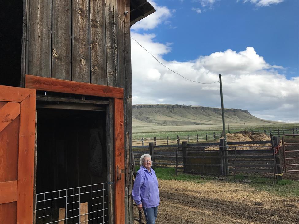 Meet Lillian Watson – The Longhaul Trailblazer