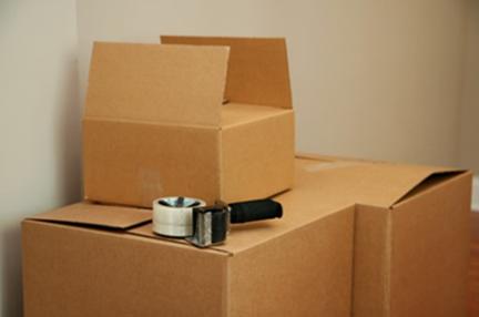 renters-boxes